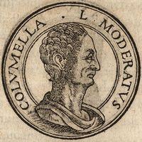 Луций Юний Модерат Колумелла